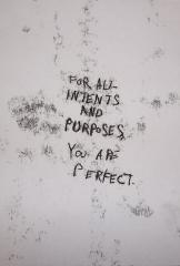For All Intents and Purposes You are Perfect